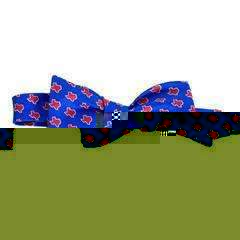 Smilethealbum - Texas Gameday Bow: Blue